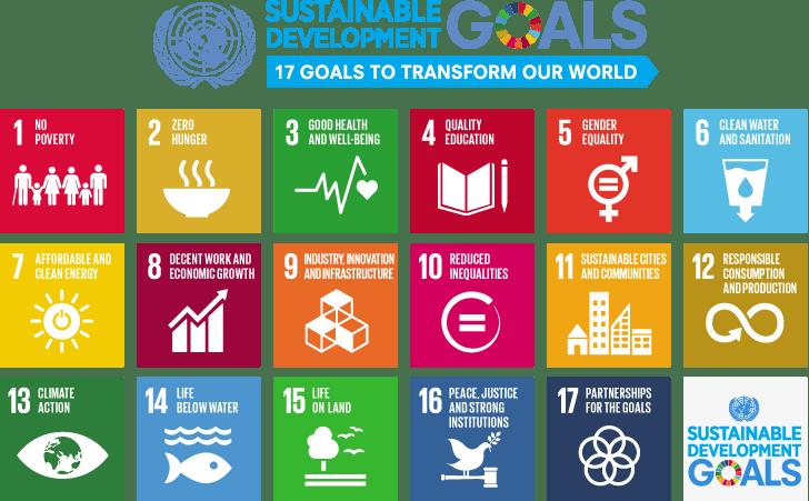 De 17 duurzame transformatiedoelen van de United Nations